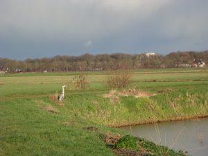 landschap rondom gytsjerk